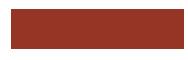 BR Svami Logo